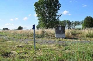 Grundstück zu kaufen in Siedlerfeld, 14728 Rhinow, INVESTOREN-BAUGRUNDSTÜCK IN RHINOW
