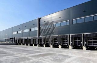 Gewerbeimmobilie mieten in 64673 Zwingenberg, PROVISIONSFREI ✓ LAGER-/LOGISTIK-NEUBAU ✓ 30.000 m² / teilbar ✓ Rampe + eben ✓ 10 m Höhe ✓