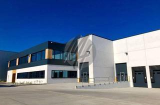 Gewerbeimmobilie mieten in 64673 Zwingenberg, PROVISIONSFREI ✓ LAGER-/LOGISTIK-NEUBAU ✓ 5.000 m² / teilbar ✓ Rampe + eben ✓ 10 m Höhe ✓
