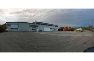 Gewerbeimmobilie mieten in 89188 Merklingen, Halle mit zusätzlicher Freifläche - direkt an der A 8 Autobahnanschluß