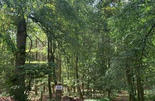 Gewerbeimmobilie kaufen in 17335 Strasburg, 96 ha Eigentumsflächen Wald-Acker-Grünland mit Jagdhaus!