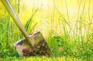 Grundstück zu kaufen in 92224 Ammersricht, Bauträger aufgepasst !