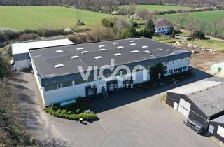 Gewerbeimmobilie kaufen in 53881 Euskirchen, IM ALLEINAUFTRAG | PROVISIONSFREI | UNTERNEHMERIMMOBILIE | WGK | RAMPEN | VIDAN REAL ESTATE