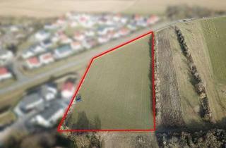 Grundstück zu kaufen in 67593 Westhofen, Unerschlossenes Grundstück in Westhofen