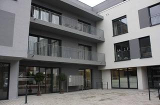 Wohnung mieten in Hauptstraße 56, 97990 Weikersheim, Ihr Appartement in der Residenz Weikersheim, WohnenPLUS für Senioren