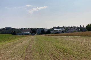 Gewerbeimmobilie kaufen in 71272 Renningen, Verkauf Ackergrundstück/ Gewerbebauerwartungsland in 71272 Malmsheim, KP 185.000€